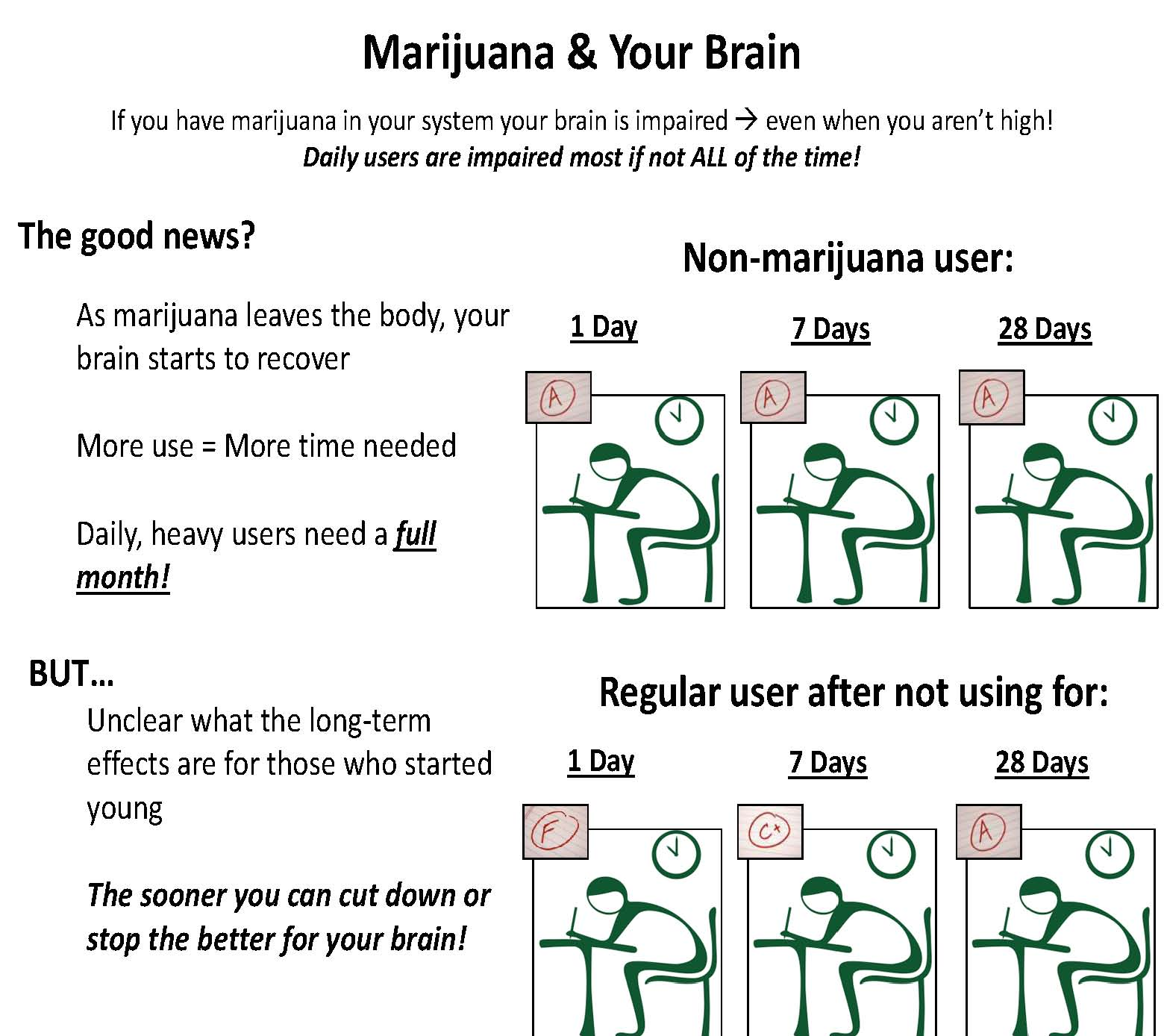 Marijuana and Your Brain